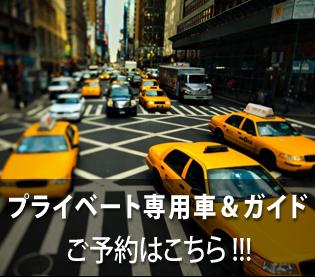一日:専用車&専用ガイド(市内範囲,8H)