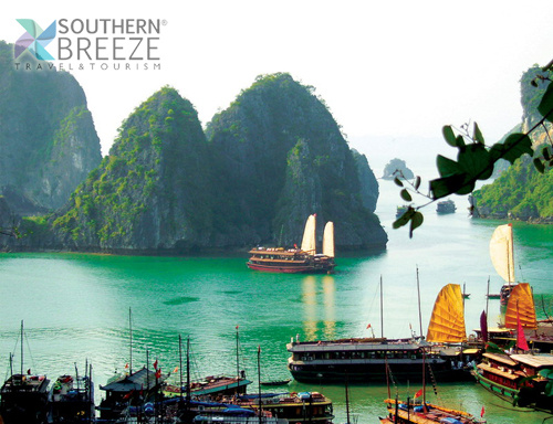 Ha Long Cruise5
