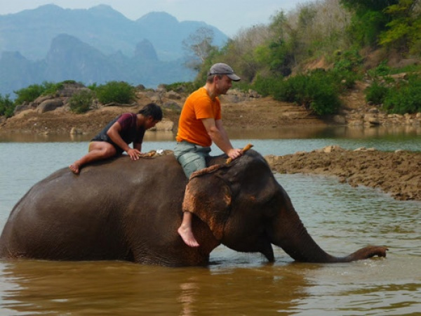 一日:象使いトレーニング ※英語ガイドになります(マホートの先生)
