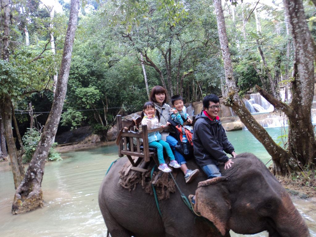 一日:象乗りとルアンパバーン市内観光(王宮、プーシー、ワットシエントーン、ワットマイ、ワットヴィスン)(昼食付)